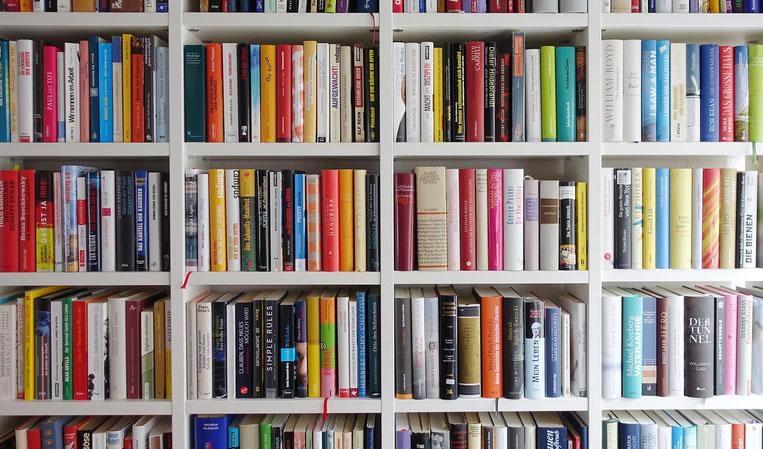 Cursos de Redação e Oratória - Saramago